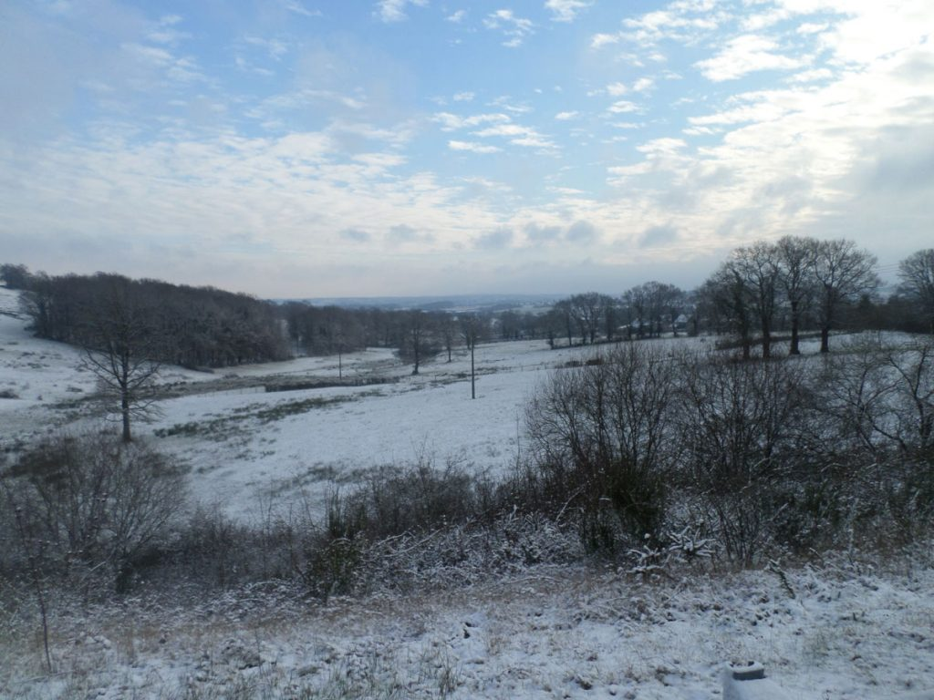 Beautiful winters day